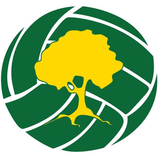 cropped-Sylvania-Heights-Netball-Club-favicon-1.png