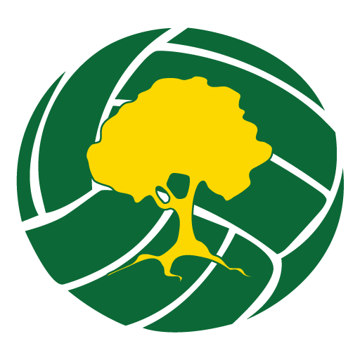 cropped-Sylvania-Heights-Netball-Club-favicon.png